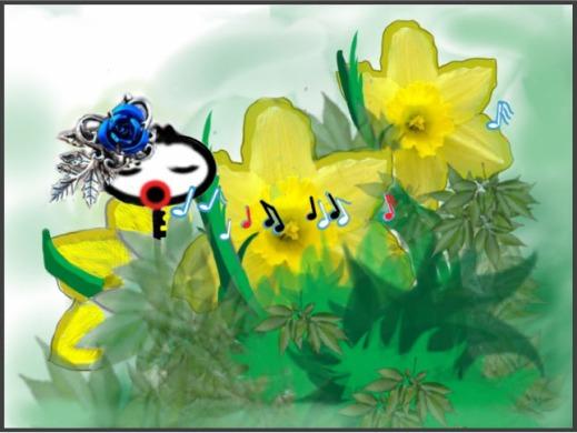 2 Aria in daffodis 450